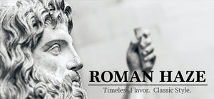Domus by Roman Haze Review