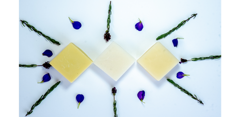 Solid shampoo and conditioner bars | Belle & Co. Beauty, Naturally