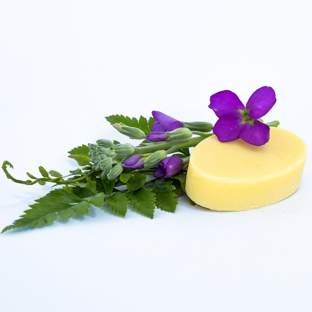 Nourishing Moisturising Bar for normal - dry - mature skin - [product_type] - BelleandCo.co.nz - Belle & Co - plastic free beauty - organic beauty