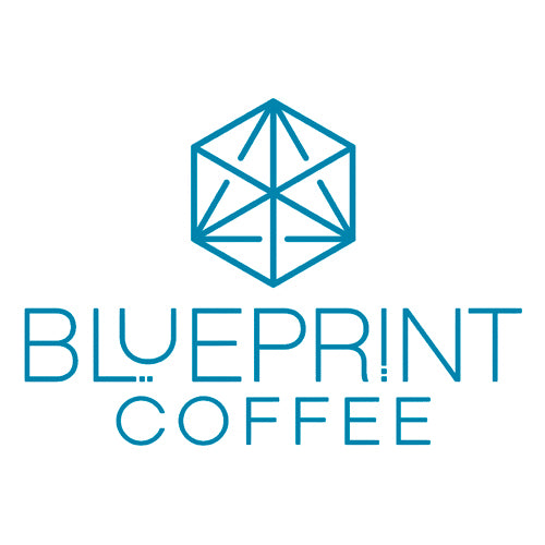 BLUEPRINT COFFEE - 12 OZ ROAST SUBSCRIPTION