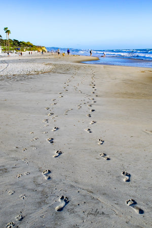 Footprints of a Couple and their Dog