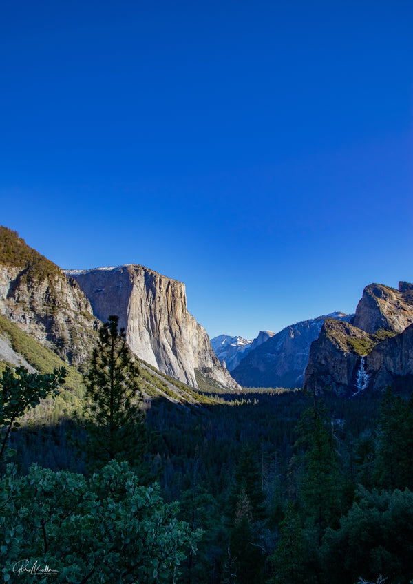 Vertical View of Winter Sun on Yosemite Valley