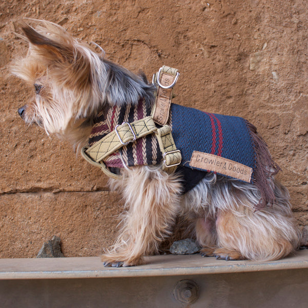 Growler Goods Orpine Dog Harness