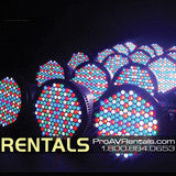 Uplighting Econo Light Package Rental