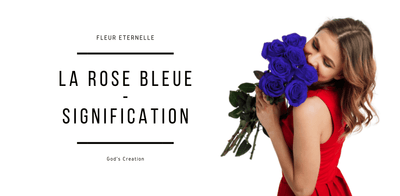 La Signification De La Rose Bleue