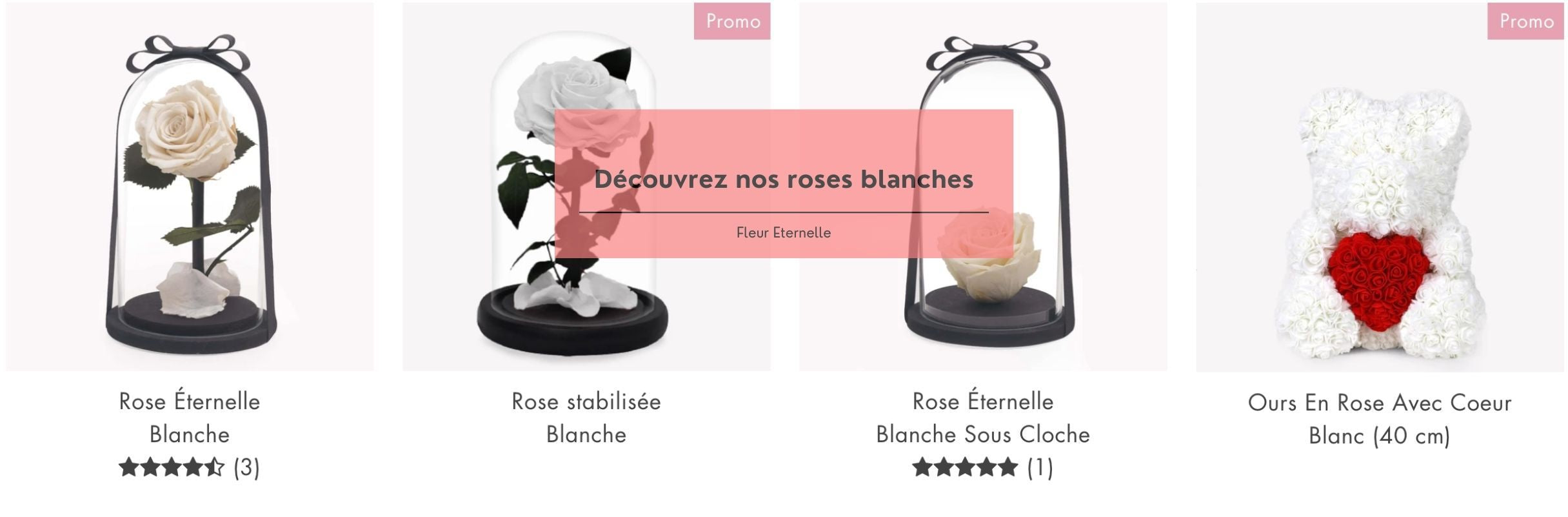 collection rose blanche