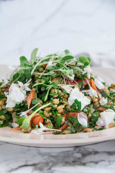 Parsley-Salad-With-Barley-Ocean-Trout-Recipe-By-Jaharn-Quinn-From-Smor-Kitchen