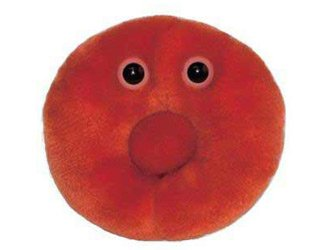 Röd blodkropp (ca. 40cm I diameter) / Röd blodcell / Red Blood Cell / Erythrocyte