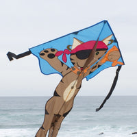 Piratkatten Blackpaw drake / kite från Premier Kites i USA