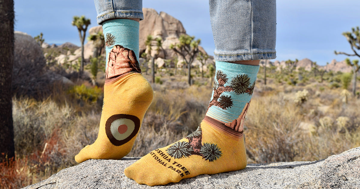 Joshua Tree National Park socks worn in the park look great with the Joshua trees in the background