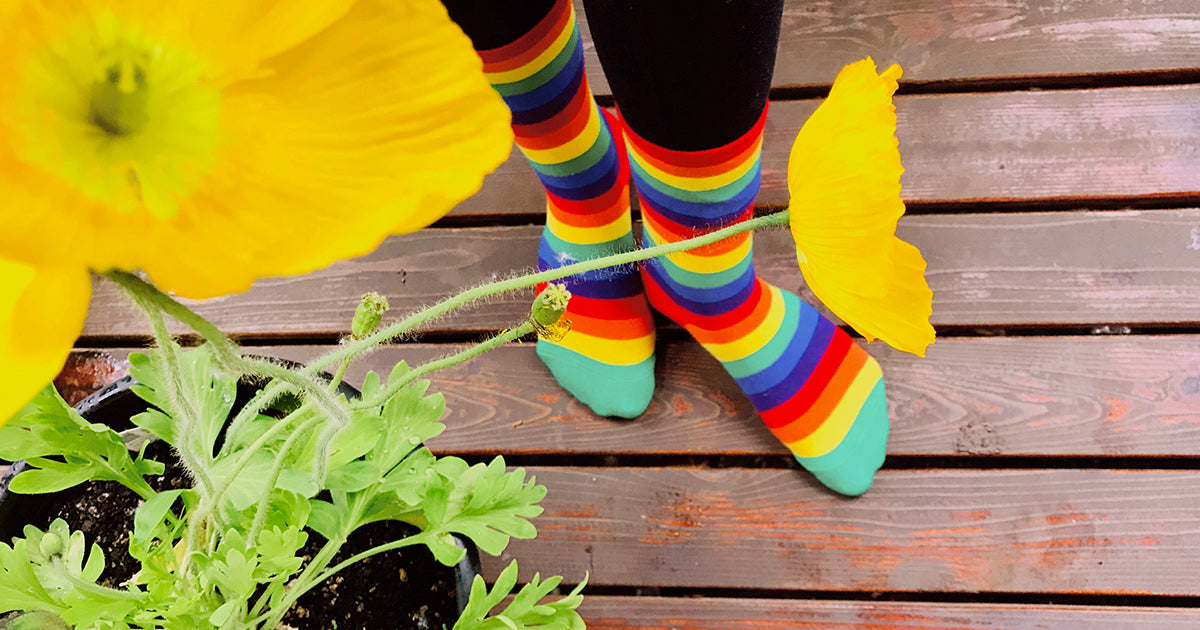 Rainbow striped socks with a yellow poppy flower.