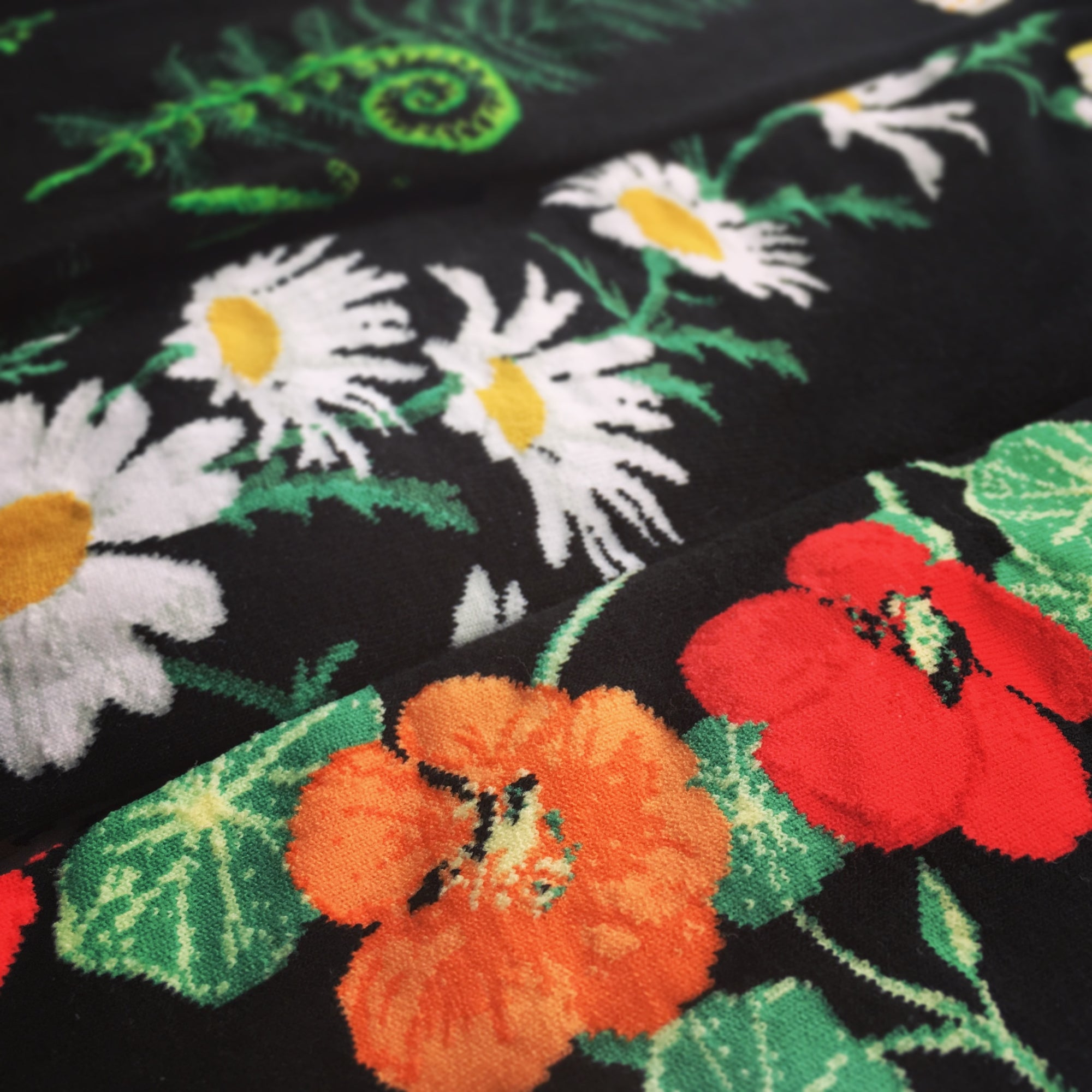 This Flower Garden Collection shows off garden and plant themed socks, including these 3 ModSocks knee highs that have black backgrounds. The front shows off red and orange nasturtiums, the 2nd white and yellow daisies, the 3rd green ferns and fiddleheads