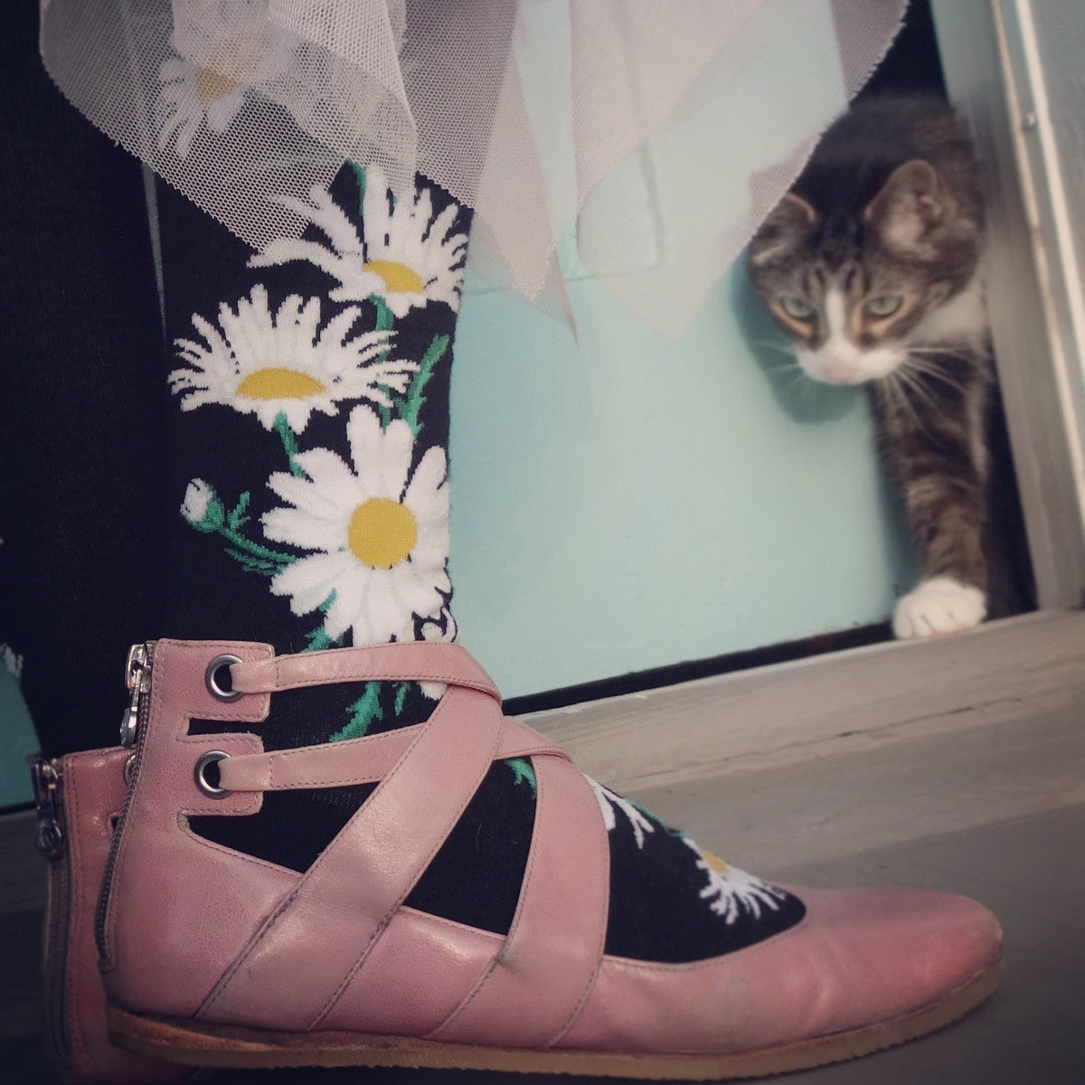A cat looks at the beautiful floral socks his owner wears, which are adorned with daisy flowers on a black background.