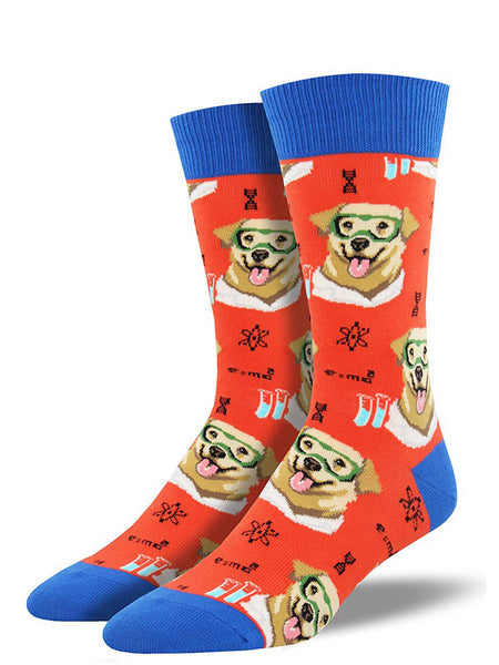 Science lab dog socks with chemistry and Labrador dogs