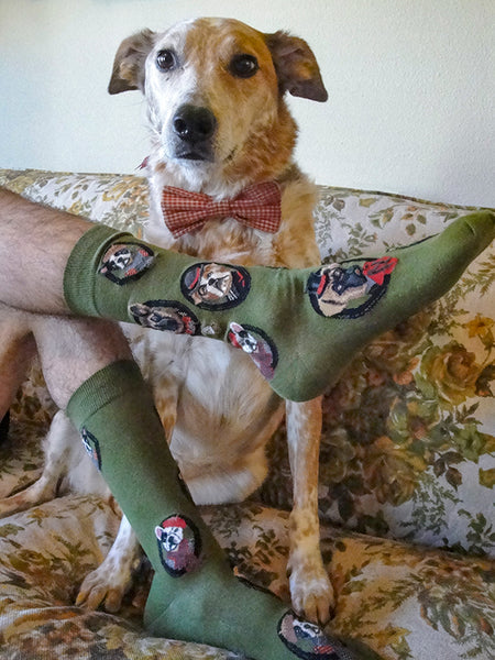 Men's dress socks with dogs wearing fancy clothes