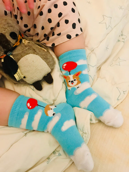 Cute dog socks for kids with corgis