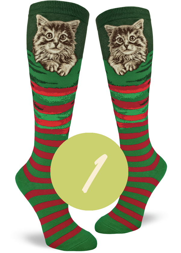 Christmas socks with cats in Christmas stockings