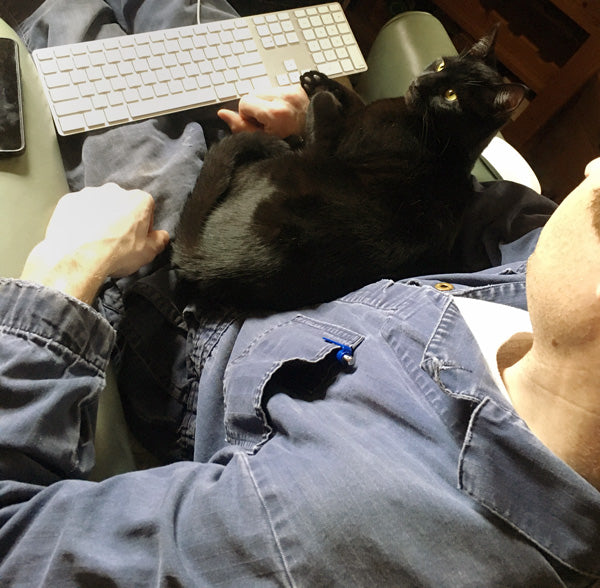 Ben and Emo cat working from home