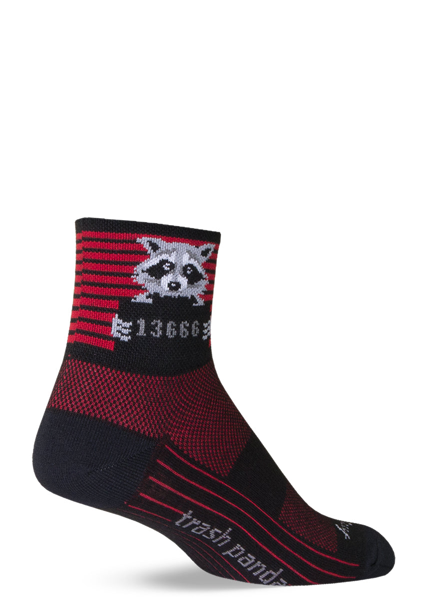 "Funny raccoon socks with raccoons getting their mugshots taken on red & black striped background with the words ""trash panda"""