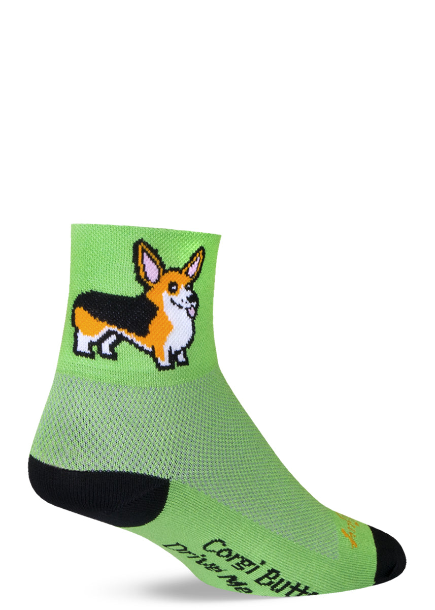"Cute corgi dog socks for men and women with smiling Welsh corgis and the words ""Corgi butts drive me nuts."""