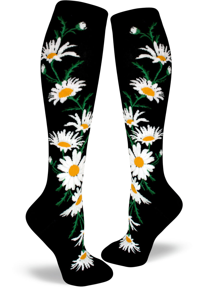 Knee-high daisy socks for women with yellow and white daisy flowers on a black background