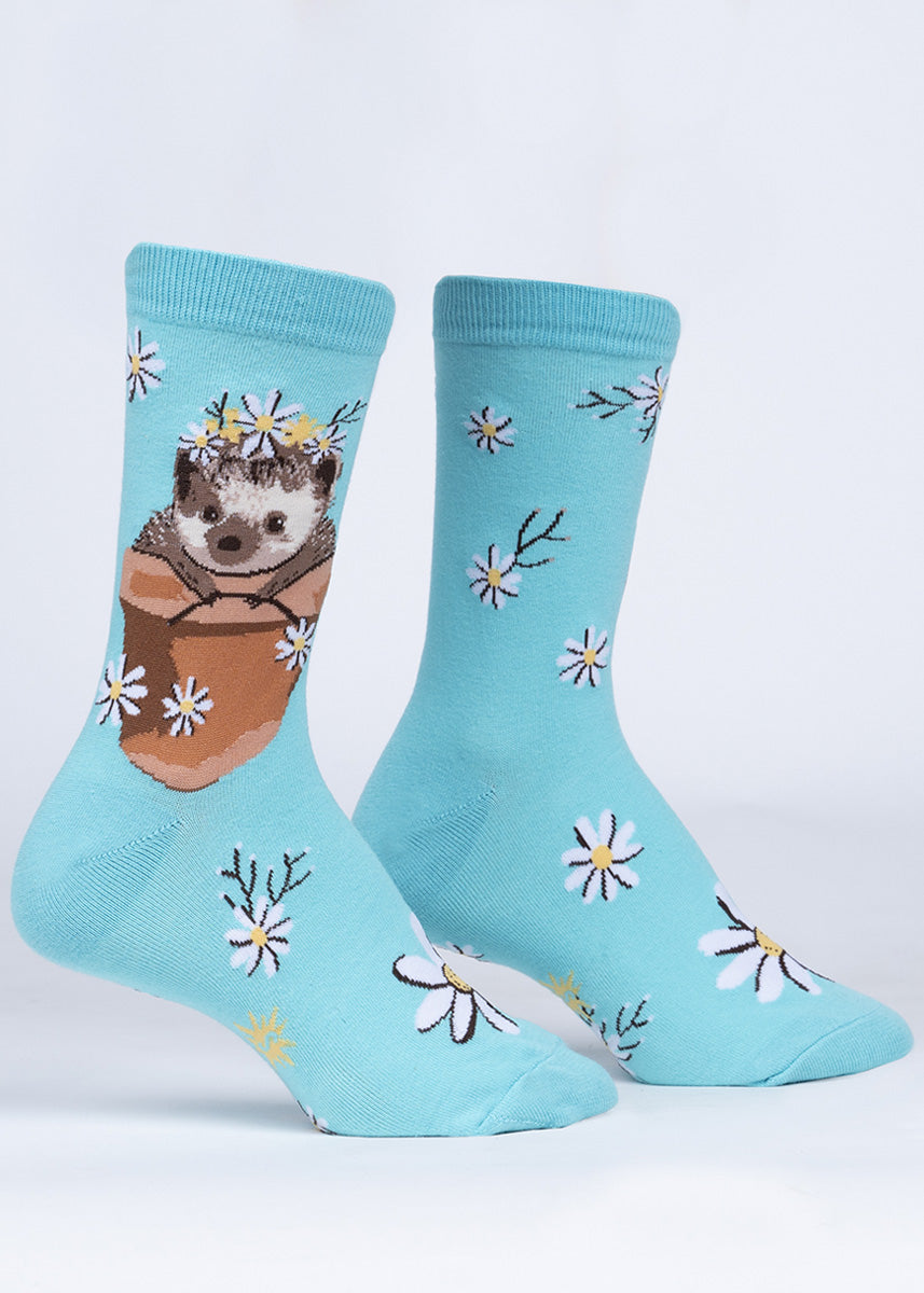 Cute animal socks for women feature a hedgehog in a terracotta pot surrounded by white daisies!
