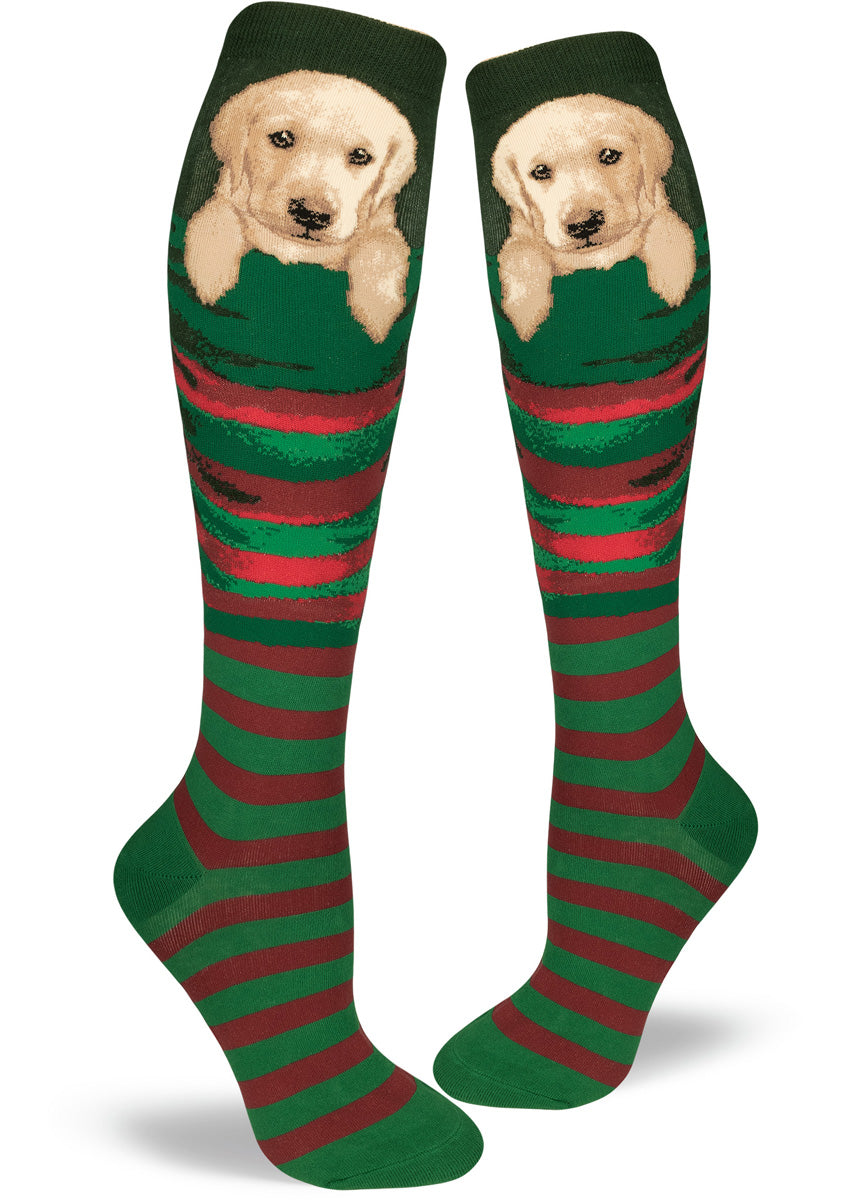 Cute yellow Labrador puppies sit in stockings on these Christmas dog socks for women.