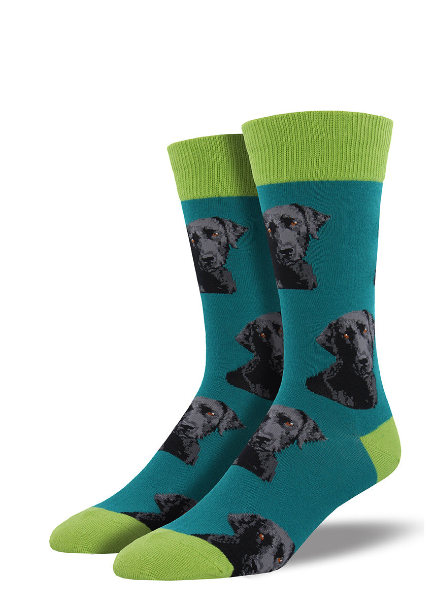 Black lab men's socks with cute Labrador retriever dogs on teal socks
