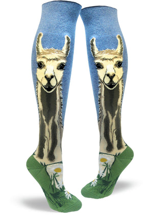 knee-high llama socks for women with llamas smiling against a blue sky and green grass