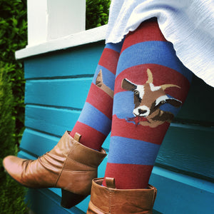 Hungry goats munch down on horizontal stripes on ModSocks knee socks.