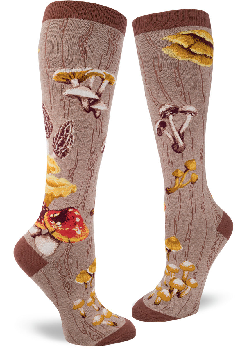 Knee-high mushroom socks with different mushrooms on a brown background