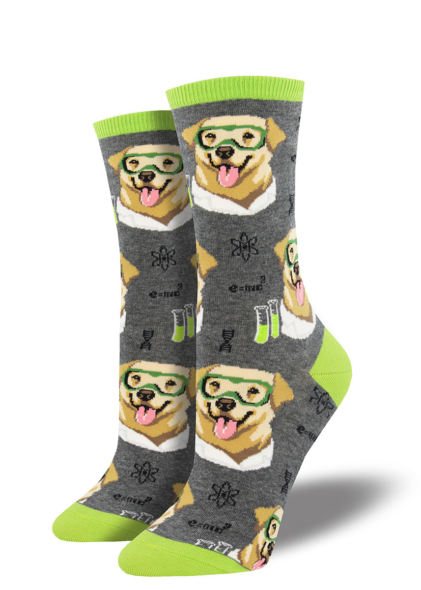 Yellow science labs wear safety googles on these funny science dog socks for women.