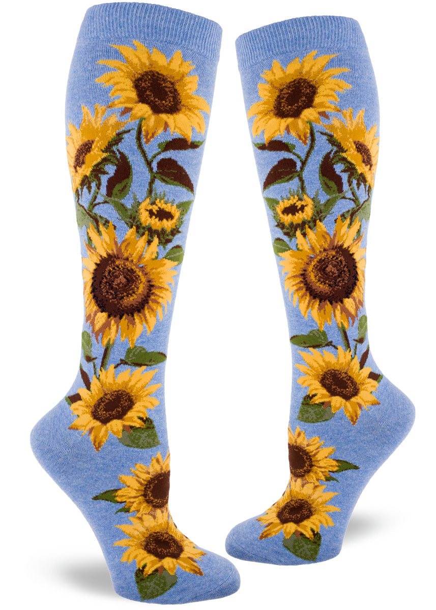 Knee high socks for women feature golden sunflowers bursting to life on a cornflower blue background.