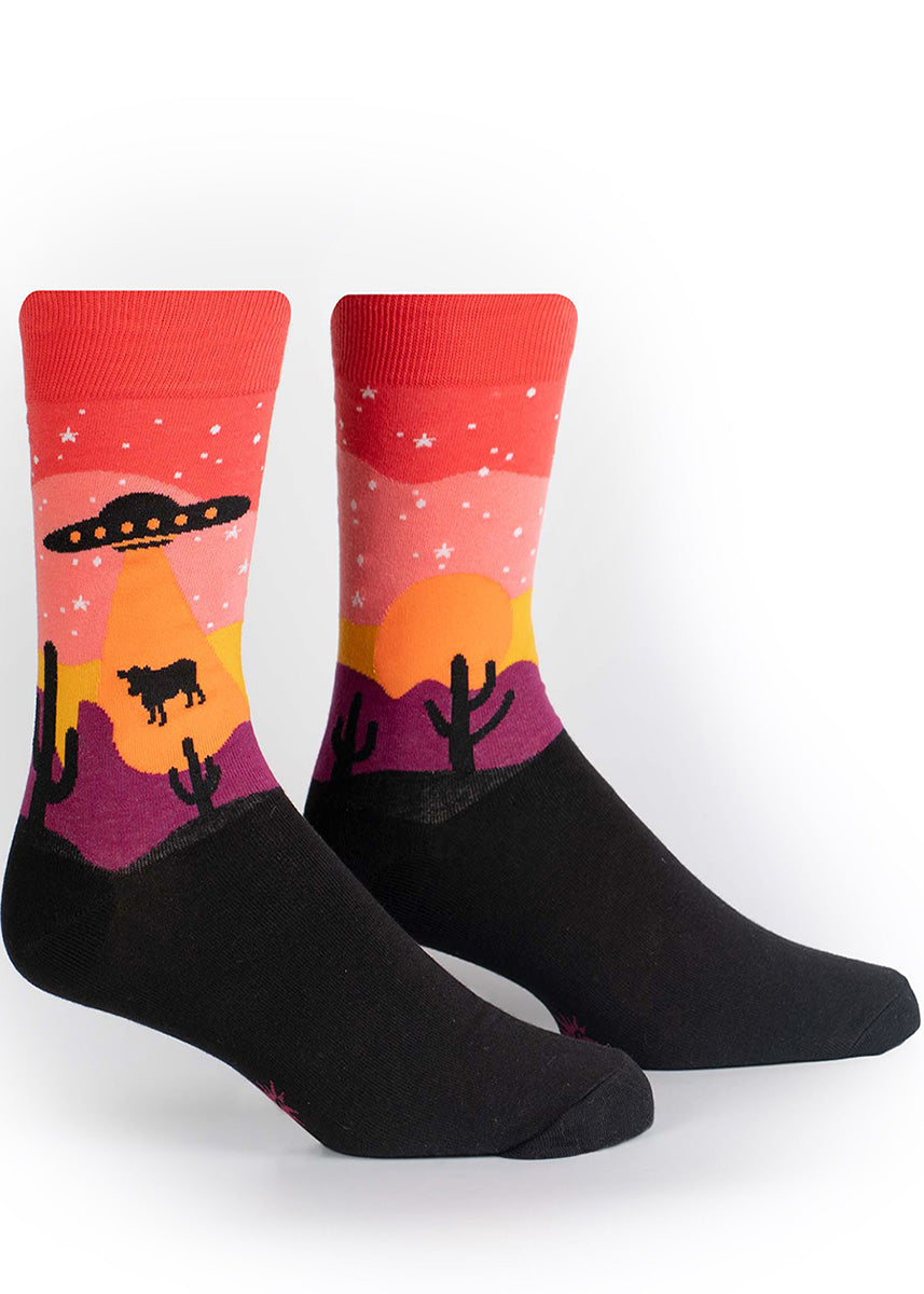 Area 51 socks for men show a UFO beaming up a cow on a beautiful desert night.