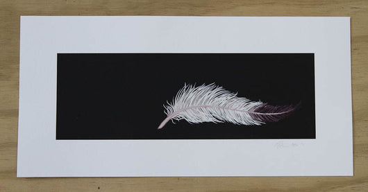 Feather Print by Laura Shallcrass