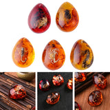 Fashion Natural Ornament Insects Amber Gemstone