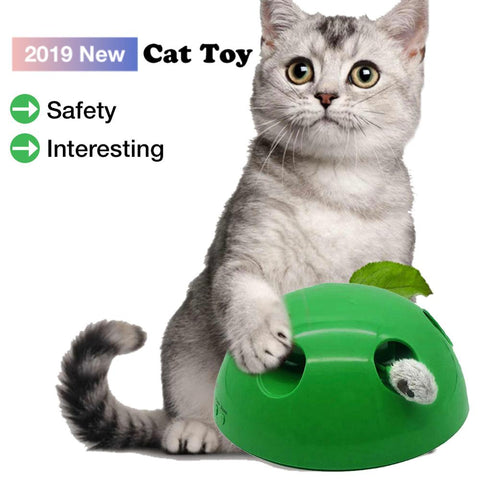 POP N PLAY Cat Interactive Toy