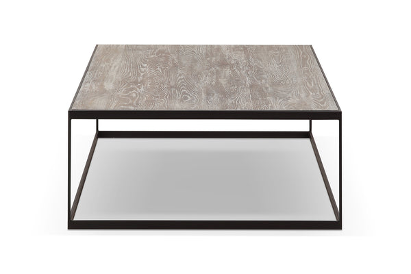 Metal and Wood Coffee Table CT01