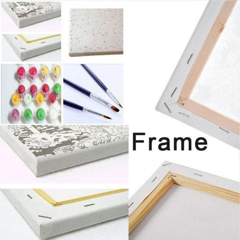 Framed Paint by Numbers Kit