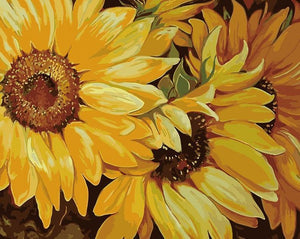 Amazing Sunflowers Paint by Numbers