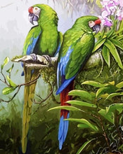 Load image into Gallery viewer, Green Parrots Paint by Numbers