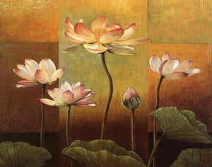 Beautiful Lotus Art Paint by Numbers