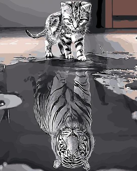 Cat as Tiger Reflection Paint by Numbers