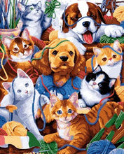 Load image into Gallery viewer, Cats & Dogs Paint by Numbers