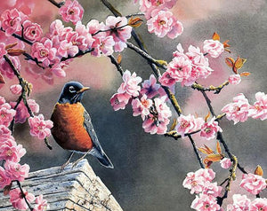 Flowers & Bird Paint by Numbers