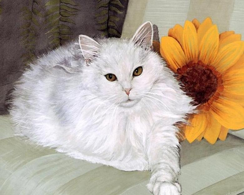 Chubby White Cat Paint by Numbers