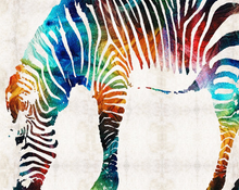 Load image into Gallery viewer, Colorful Zebra DIY Painting Kit