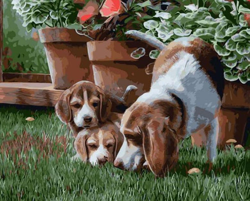 Dog Family Paint by Numbers