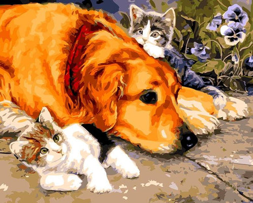 Dog & Kittens Paint by Numbers