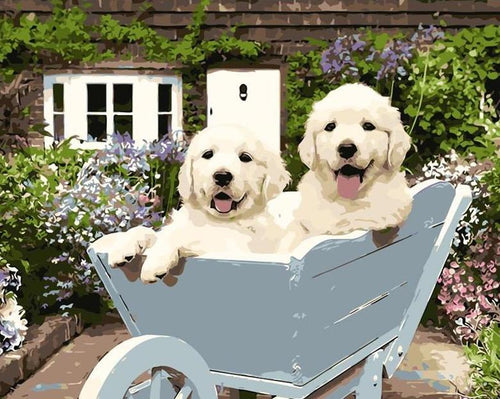 Dogs in Wheelbarrow Paint by Numbers